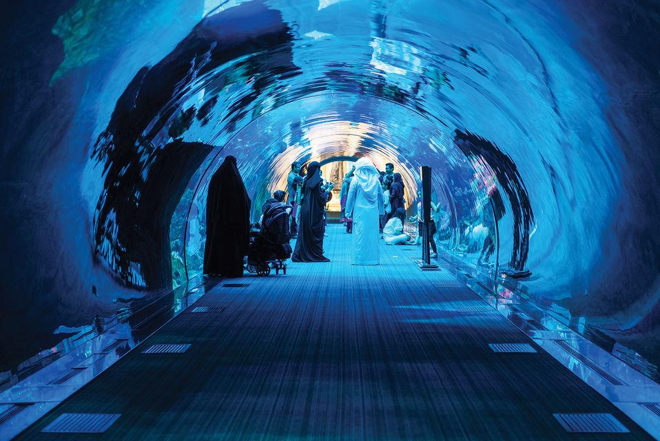 Acquario di dubai underwater zoo dubai mall for Acquario prezzi